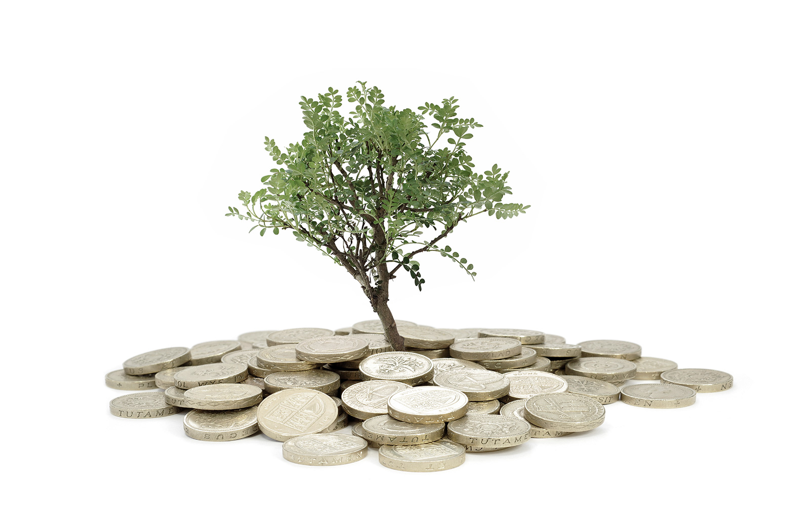 homepage_slider_image_savings&investment