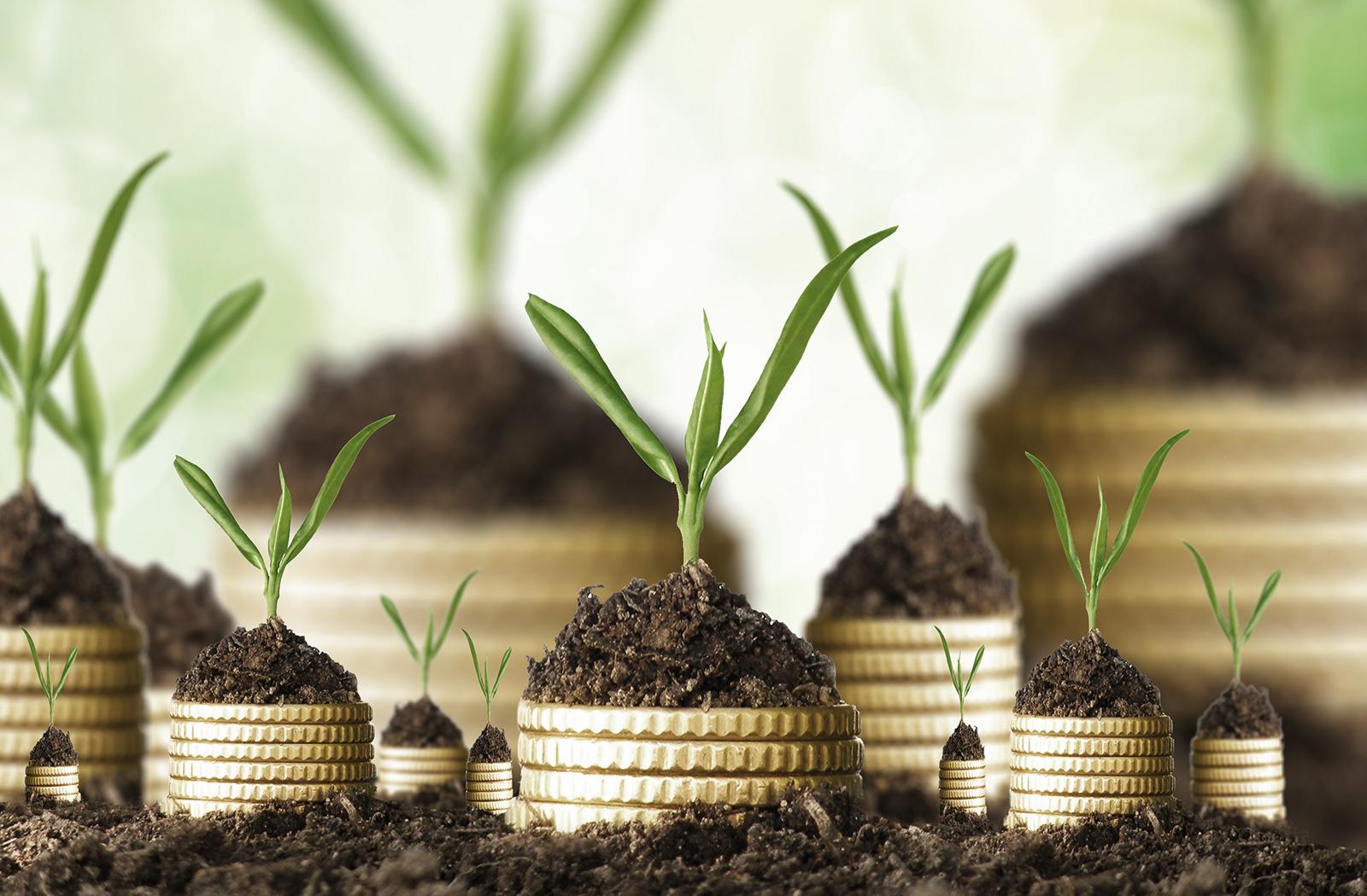 homepage_slider_image_wealth_management